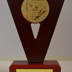 Football Wooden Award