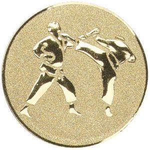 Martial Arts Medal Centres