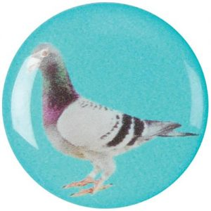Pigeon Racing Medal Centres