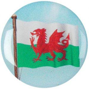 Wales Centre