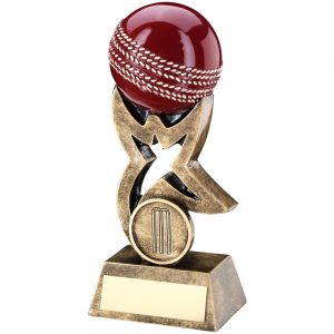 3D Cricket Ball Award