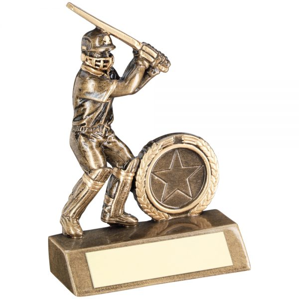 Cricket Bat Resin Award