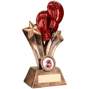 Boxing Gloves Resin Award