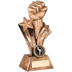 Clenched Punch Resin Award