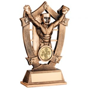 Male Boxing Award