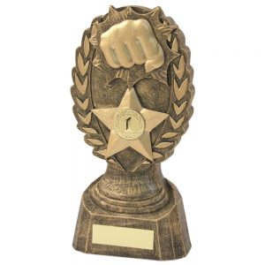 Martial Arts Punch Resin Award