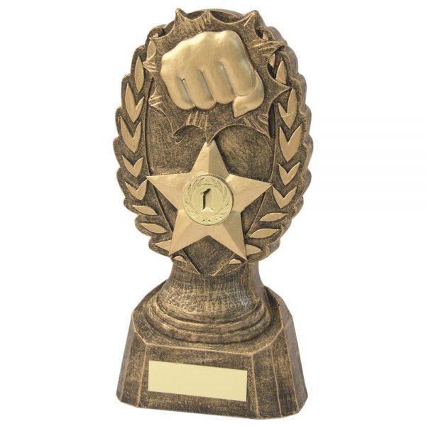 Martial Arts Punch Resin Award
