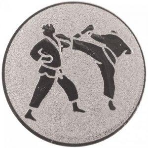 25mm Silver Metal Martial Arts Centre