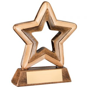 Generic Resin Star Award