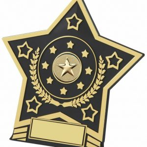 Plastic Star Award with metal star centre