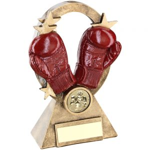 Red Boxing Oval Resin Award